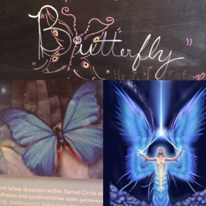 butterfly-collage